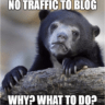 Why my site not getting traffic? Mistakes I did, you should not