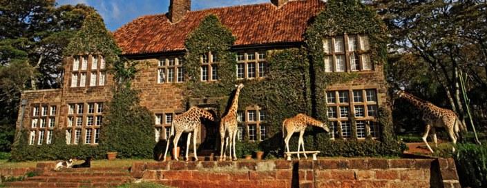 Kenya Luxury Safari - Nairobi