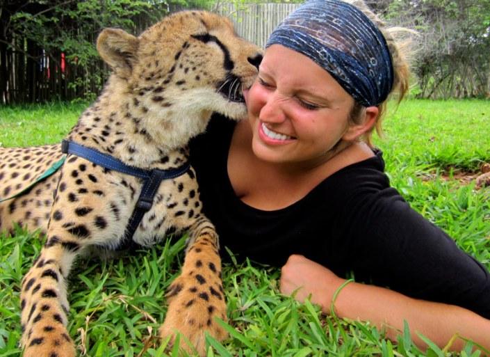 Zamibia Luxury Safari - Cheetah Encounter