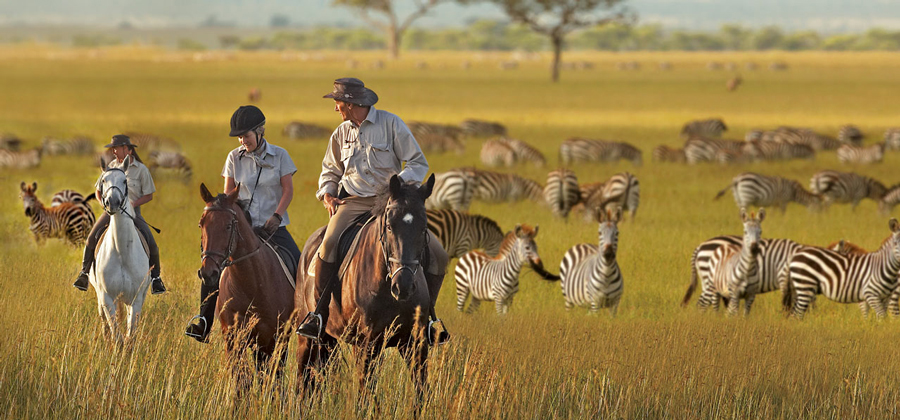 Horse Riding in the Serengeti