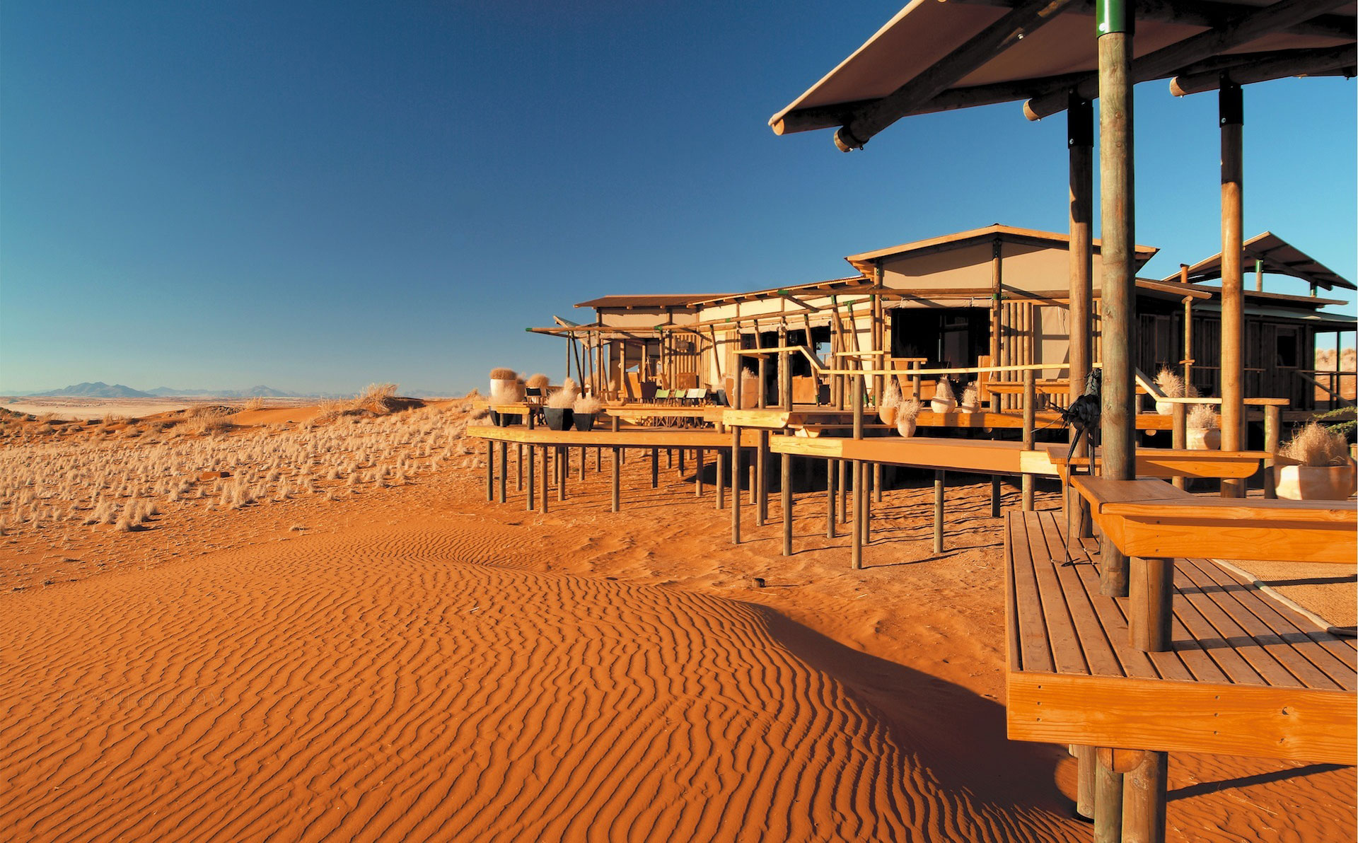 Wolwedans Dunes Camp Luxury on Stilz