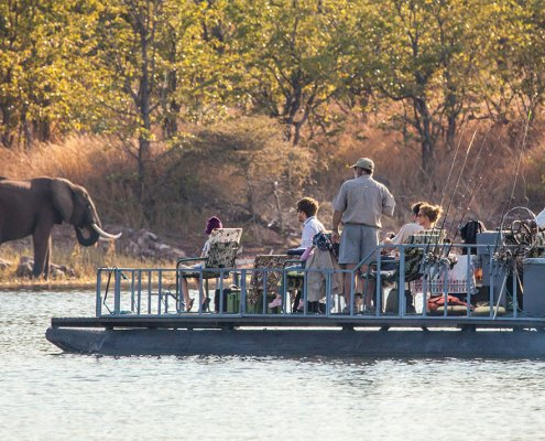 Lake Kariba - Musango Safari Camp - Zimbabwe