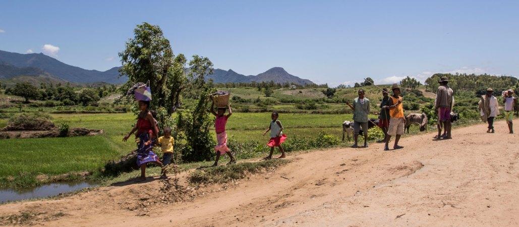 Madagascar people safari