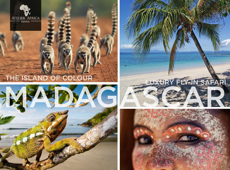 Madagascar Inspiration Sample Safari