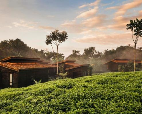 Atelier Africa Safaris, Luxury Safari, Rwanda, Destination, Nyungwe House