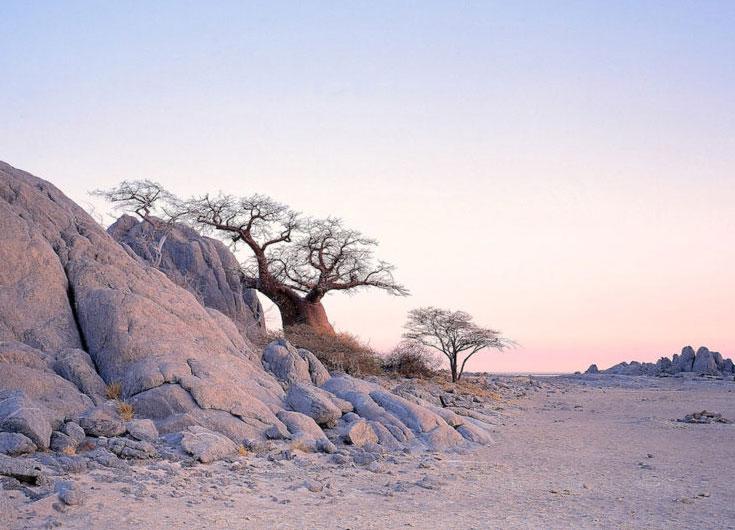 Botswana Safari Makgadikgadi Pans