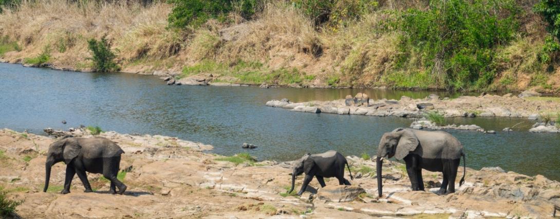 Hideout Mwamba Bush Camp