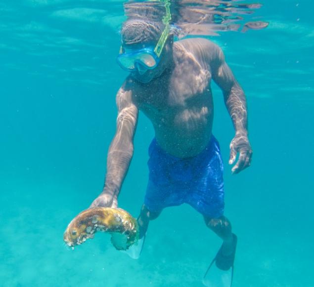 snorkelen Tsara Komba