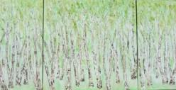 Birken-im-Fruehling Triptychon