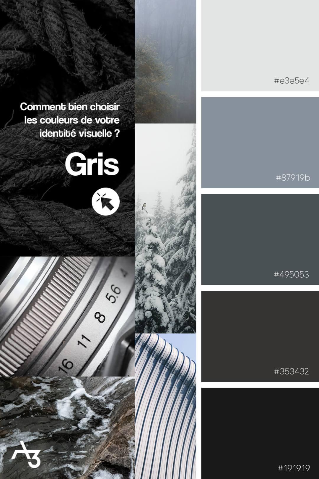 Palette gris