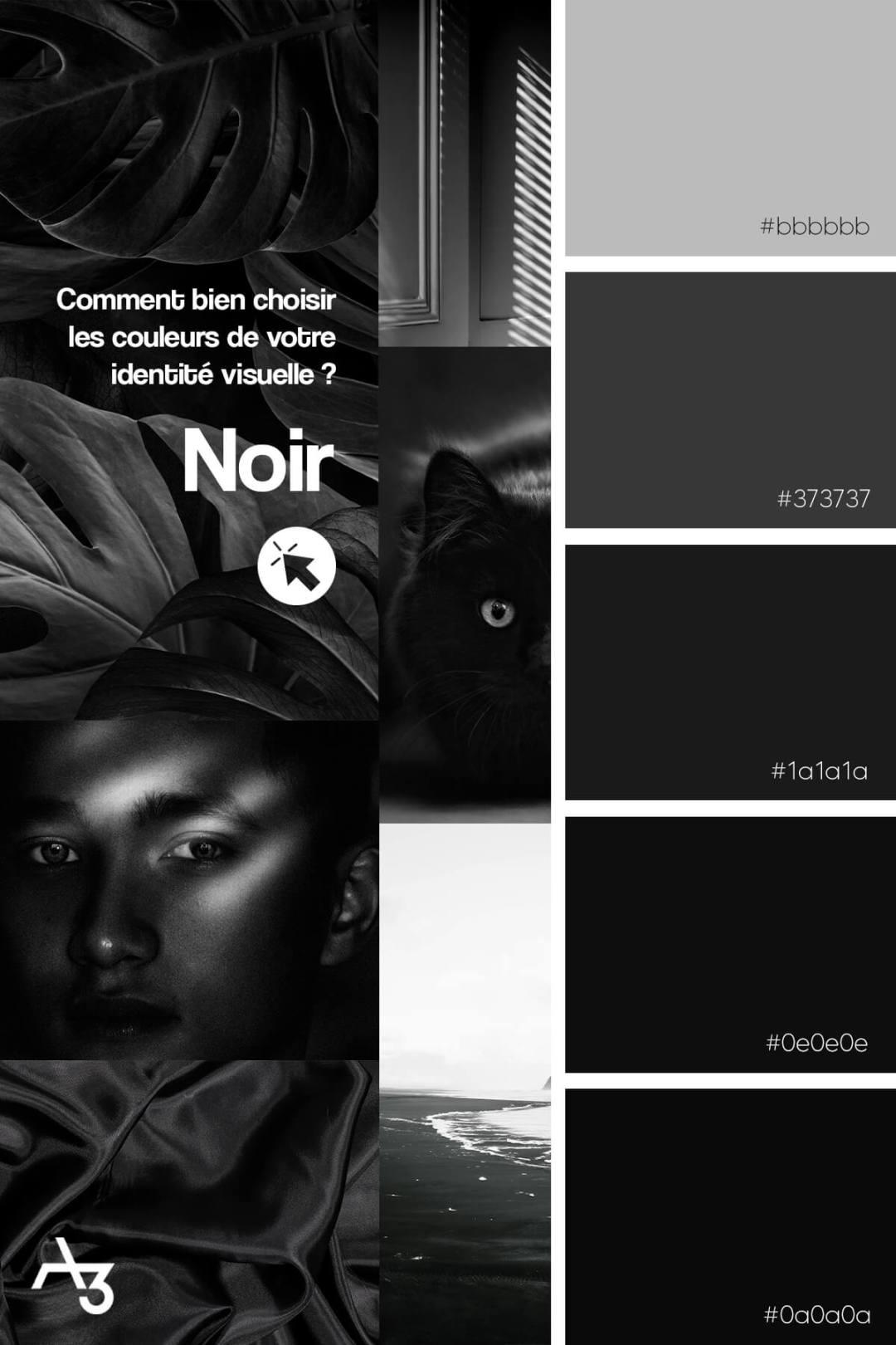 Palette noir