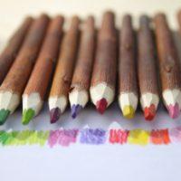 branches transformées en crayons
