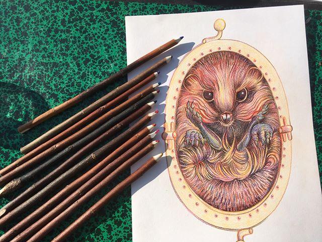 ressources créatives les couleurs de sophie