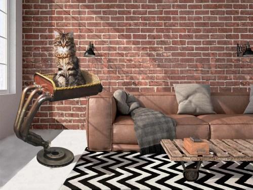 Arbre a chat de luxe Collecteur Yamaha