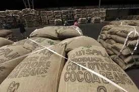 Atelier du Loft Créations artistique d'objets fonctionnels insolites Pour information, transport du café en Côte d'Ivoire dans des sacs en toile de Jute.