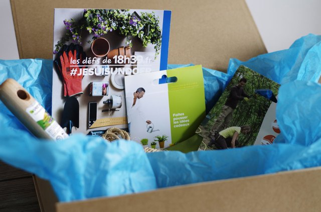 DIY-Mon-pêle-mêle-plantes-et-polaroïds-box-les-defis-de-18h39