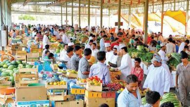 Photo of ضبط 282 عاملًا في سوق الموالح