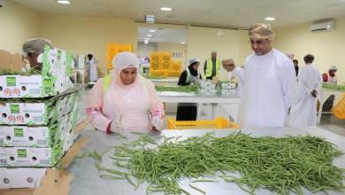 Photo of بالصور: وزير الزراعة يزور مزرعة بها حوالي 150 عمانيًا
