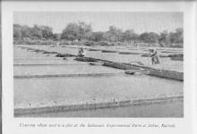 Photo of منها الأفغاني مدّعي النبوة وانفجار روي: أحداث وقعت في السلطنة عام 1963