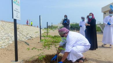 صورة ضمن مبادرة 10 ملايين شجرة: افتتاح أول موقع لاستزراع الأشجار البرية