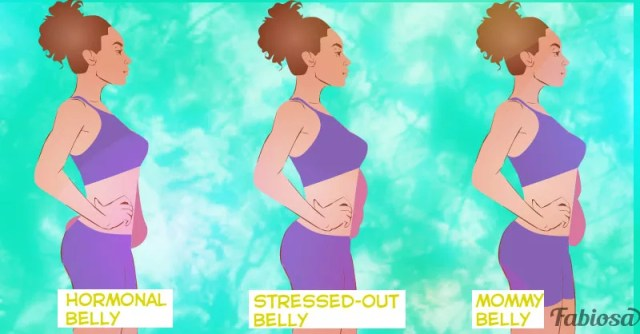 Different Types Of Belly Fat Athelio Com