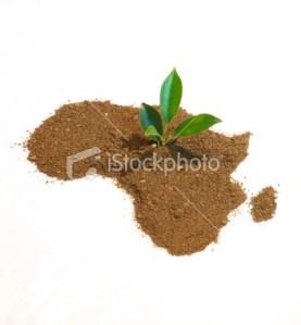 africa sand