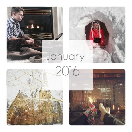 january 2016 collage 2
