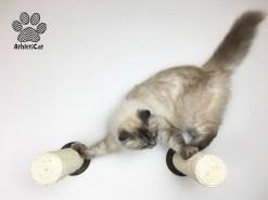 Tiragraffi a muro per gatti