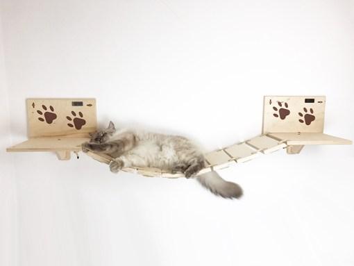 Ponte per gatti