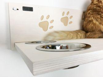 mensola per gatti con incisione