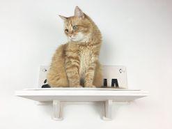 Mensola per gatti con nome