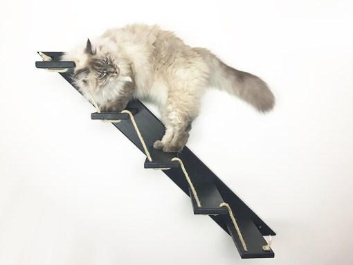 Scaletta per gatti nera