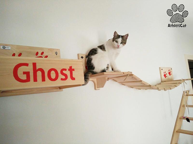 Palestra per gatti artigianale in legno athleticat