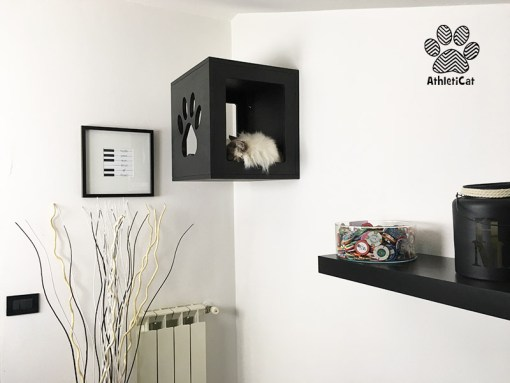 cubo per gatti a parete