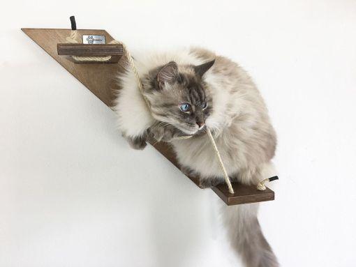 scaletta per gatti noce