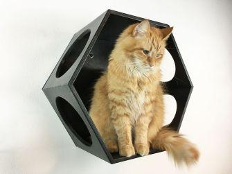 Cubo cuccia per gatti nero
