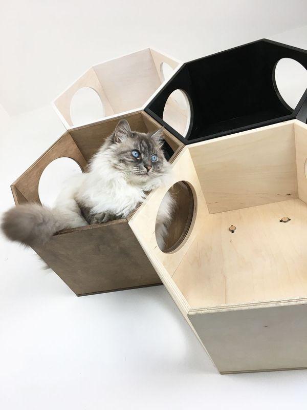 Esagoni cuccia per gatti