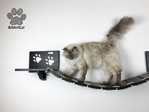 Cat bridge black