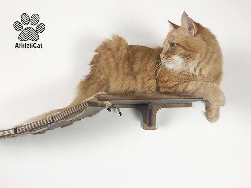 Cat bridge walnut