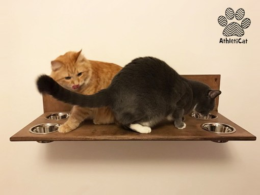 Cat shelf with bowls athleticat