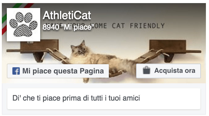 Facebook Athleticat