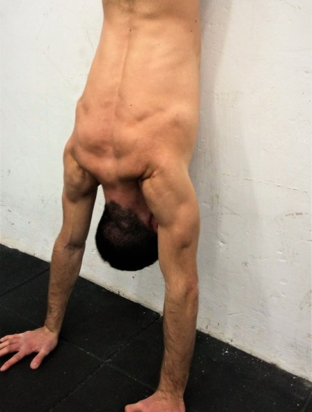 Chest to wall hand stand progression