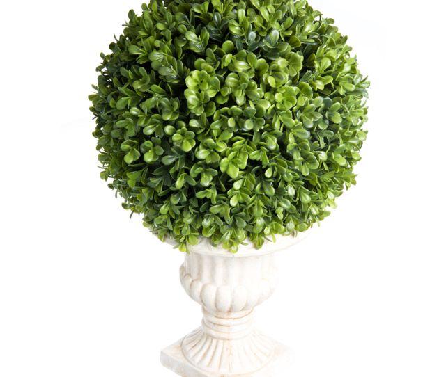 X Boxwood Ball Topiary