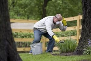 grow gardening