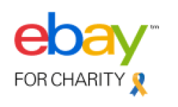 ebay for charity eCommerce online selling