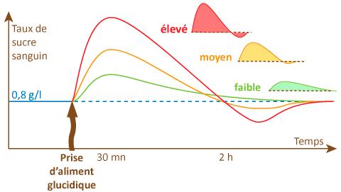 Courbe de l'index glycémique en fonction du type de glucide
