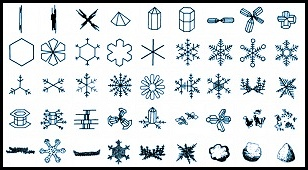 Snow Types