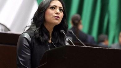 La diputada federal señaló que tan sólo en Michoacán hay cerca de 11 mil 200 productores y 100 mil trabajadores que laboran directamente en 75 mil hectáreas de cultivo, 17 mil huertos y 37 empacadoras distribuidos en 24 municipios, lo que significa uno de los pilares económicos del estado
