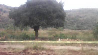 Al lugar arribaron unidades de la Policía Michoacán, los cuales confirmaron que la persona se encontraba sin vida, por lo que resguardaron el lugar y solicitaron apoyo a la Fiscalía del Estado
