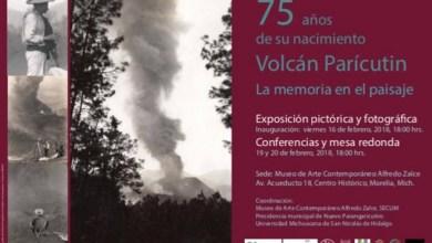 El viernes 16 de febrero a las 18:00 horas se inaugurará la exposición pictórica y fotográfica 'Las memorias del volcán', mientras que el lunes 19 y martes 20 de febrero a las seis de la tarde se llevarán a cabo una conferencia y mesa redonda en torno a este fenómeno natural
